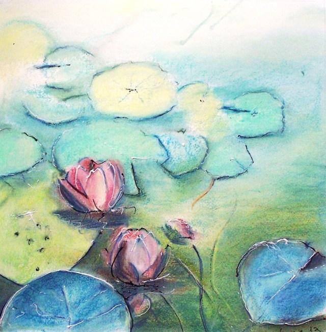 A lotus blooms