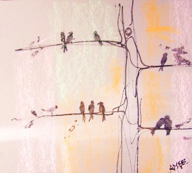 soft pastel-pour faire le portrait d'un oiseau